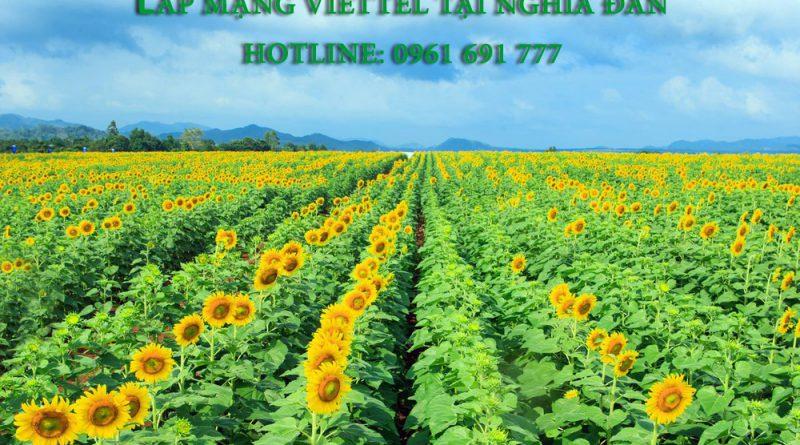 Lắp mạng viette tại Nghĩa Đàn - Viettel Telecom Nghệ An - Hotline: 0961 691 777